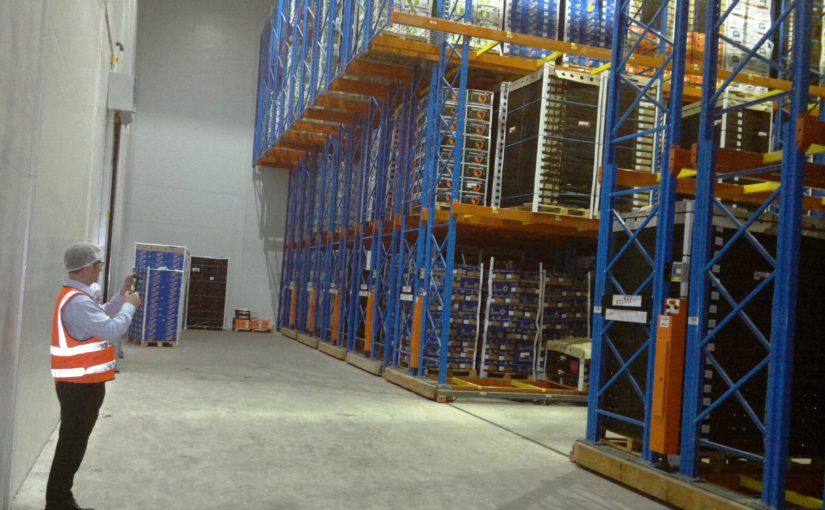 New innovations at Novo Fruit Packers