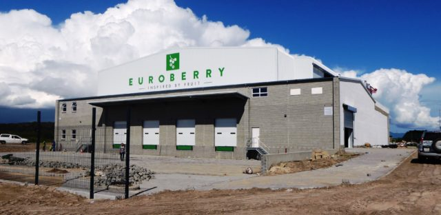 Local Frozen Berry Supplier Expands Operation