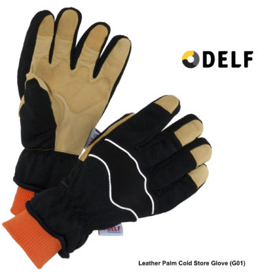 Delf Leather-Palm Cold Store Glove (G01)